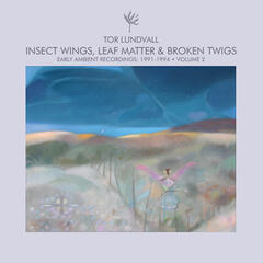 Insect Wings, Leaf Matter & Broken Twigs - Early Ambient Recordings: 1991-1994 Volume 2