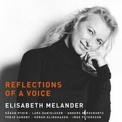 Reflections of a Voice