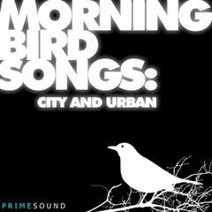 Morning Bird Songs (City and Urban Recordings)