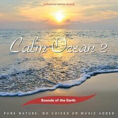 Calm Ocean 2