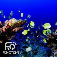 Aquarium Man - It's for Tropical Fish
