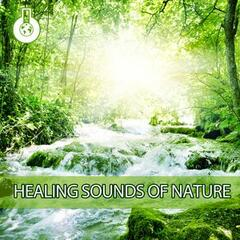 Healing Sounds of Nature