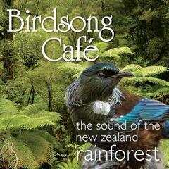 Birdsong Café - The Sound of the New Zealand Rainforest