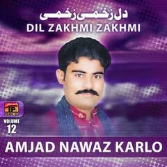 Dil Zakhmi Zakhmi, Vol. 12