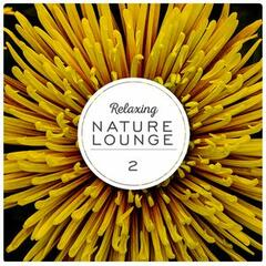 Relaxing Nature Lounge, Vol. 2