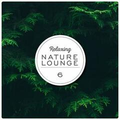 Relaxing Nature Lounge, Vol. 6