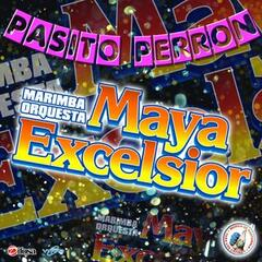 Pasito Perron - Single