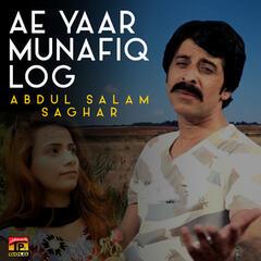 Ae Yaar Munafiq Log - Single