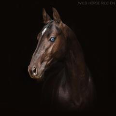 Wild Horse Ride On