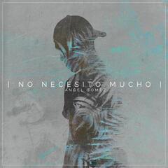No Necesito Mucho