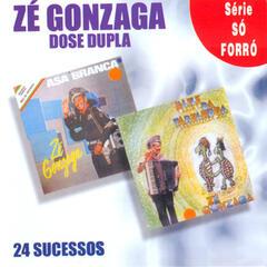 24 Sucessos - Dose Dupla