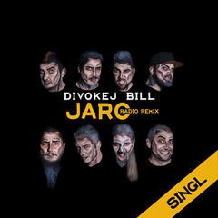 Jaro (Radio Remix)