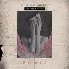In the Wild (Rey Pila Remix)