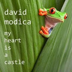 My Heart is a Castle
