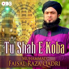 Tu Shah E Koba - Single