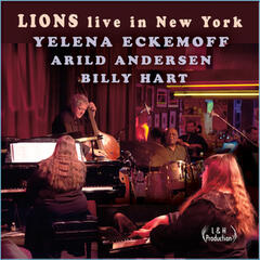 Lions Live in New York