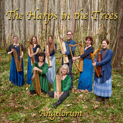 Angelorum - the Harps in the Trees