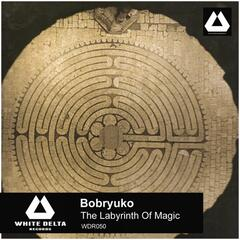 The Labyrinth Of Magic