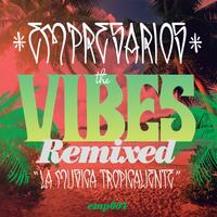 The Vibes Remixed