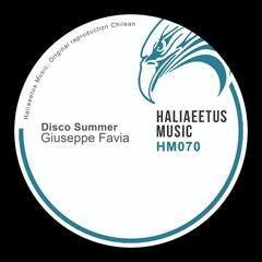 Disco Summer