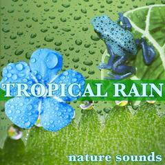 Tropical Rain Nature Sounds