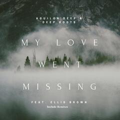 My Love Went Missing