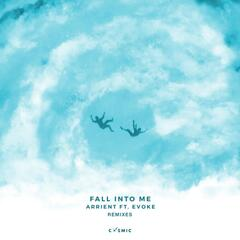 Fall Into Me Remixes