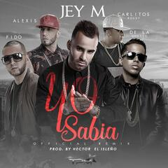Yo sabía (feat. Alexis & Fido, De La Ghetto, Carlitos Rossy) [Official Remix]