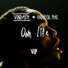 Own Life (feat. Anderson .Paak) [VIP Mix]