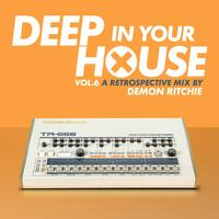 Deep in Your House, Vol. 6 - A Retrospective Mix by Demon Ritchie