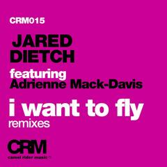 I Want to Fly, Pt. 2 (feat. Adrienne Mack-Davis) [Remixes]