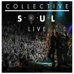 Shine (Live)
