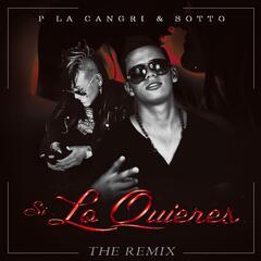 Si Lo Quieres (Remix)