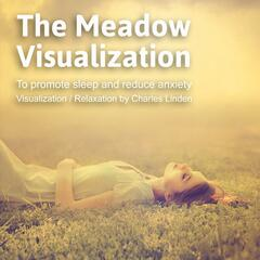 The Meadow Visualization