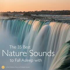 The 35 Best Nature Sounds to Fall Asleep with (Long Audio Loops, Sleep Aid)