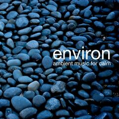 Environ: Ambient Music for Calm
