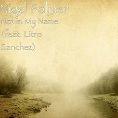 Not in My Name (feat. Litro Sanchez)