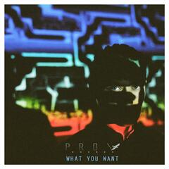 What You Want - EP