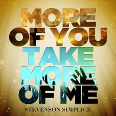 More of You Take More of Me (feat. Avi Perrodin)