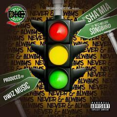 Never & Always (feat. Neci Melodi' songbird)
