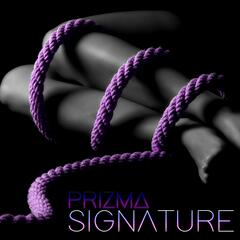 Signature (Radio Edit)