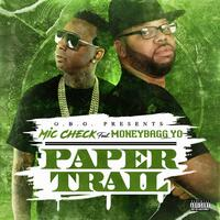 Paper Trail (feat. Money Bagg Yo)