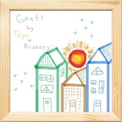 Gnats (feat. Blankts)