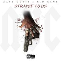Strange to Us (feat. Wave Gotti)