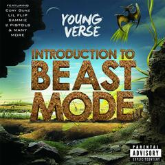 Introduction to Beast Mode