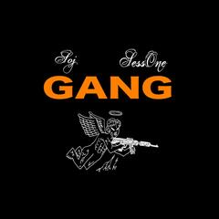 Gang (feat. SessOne)