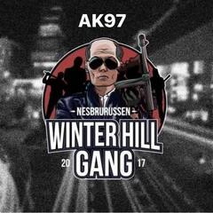 Winter Hill Gang 2017