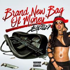 Brand New Bag of Money