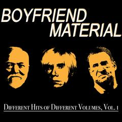 Different Hits of Different Volumes, Vol. 1