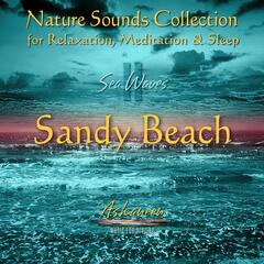 Nature Sounds Collection: Sea Waves, Vol. 2 (Sandy Beach)